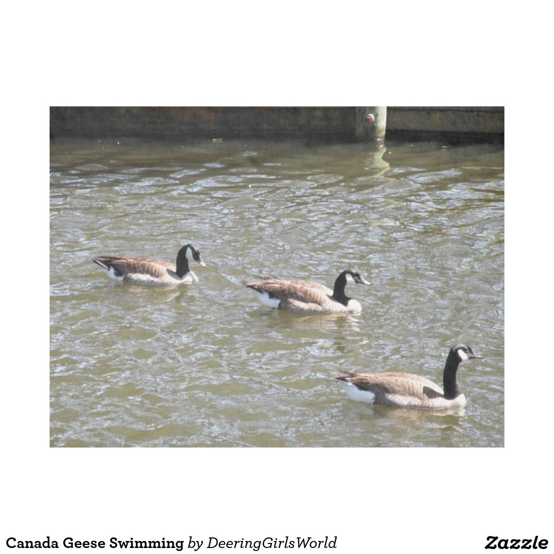 Canada Geese Swimming Fleece Blanket