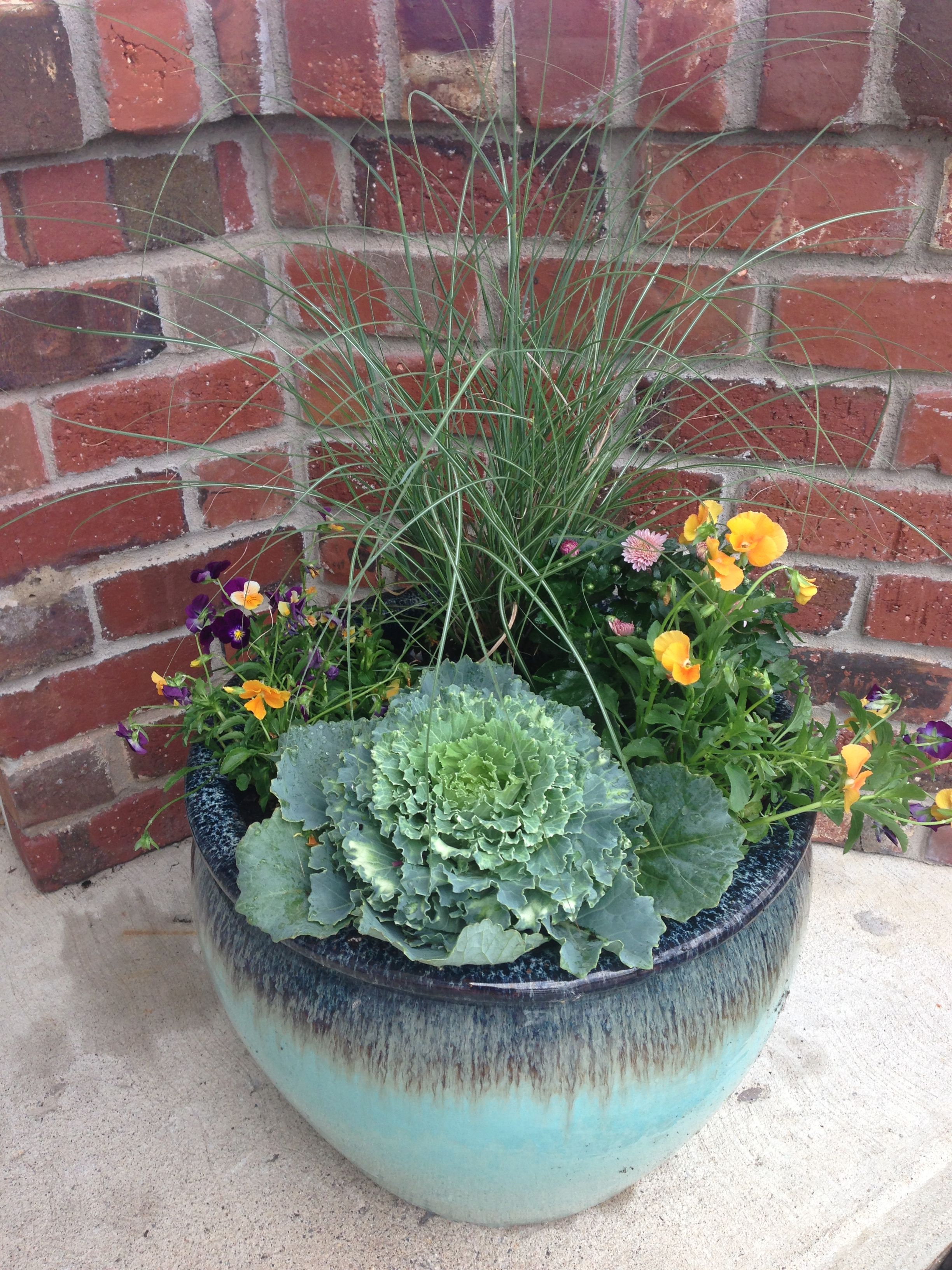 Beautiful Fall Pots Ornamental Cabbage Pansies Mums And Grass Fall Container Gardens Fall Pots Outdoor Gardens
