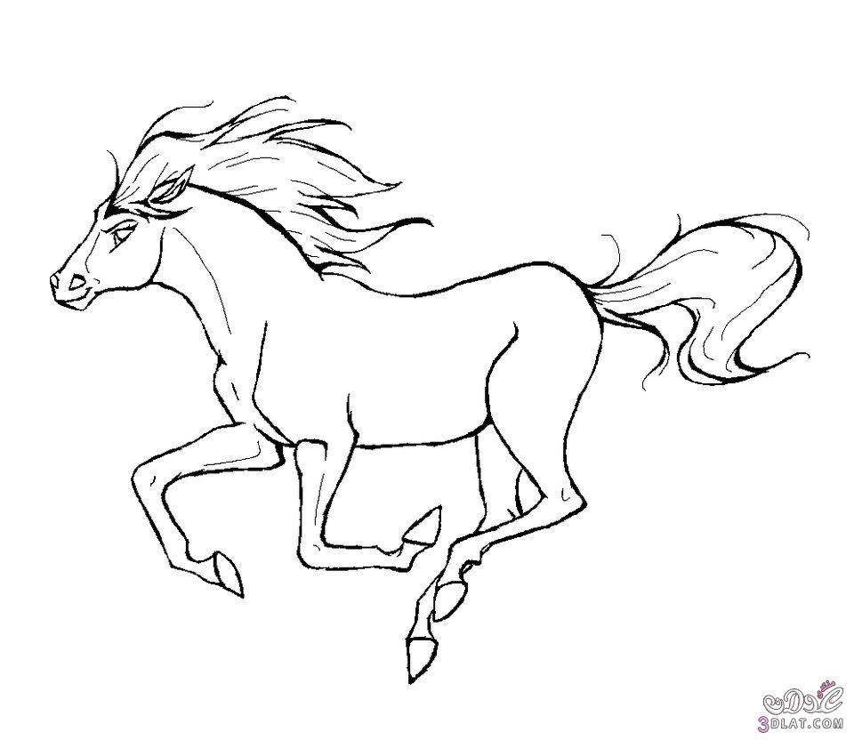 أحصنة للتلوين رسومات اطفال للتلوين حصان بالابيض والاسود
