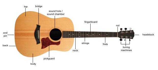 Parts Of A Guitar Guitar Guitar For Beginners Guitar Tips