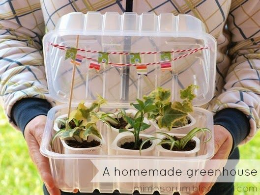 Mimosorum c mo hacer un invernadero casero diy make a homemade greenhouse paint potting - Fabricar un invernadero ...