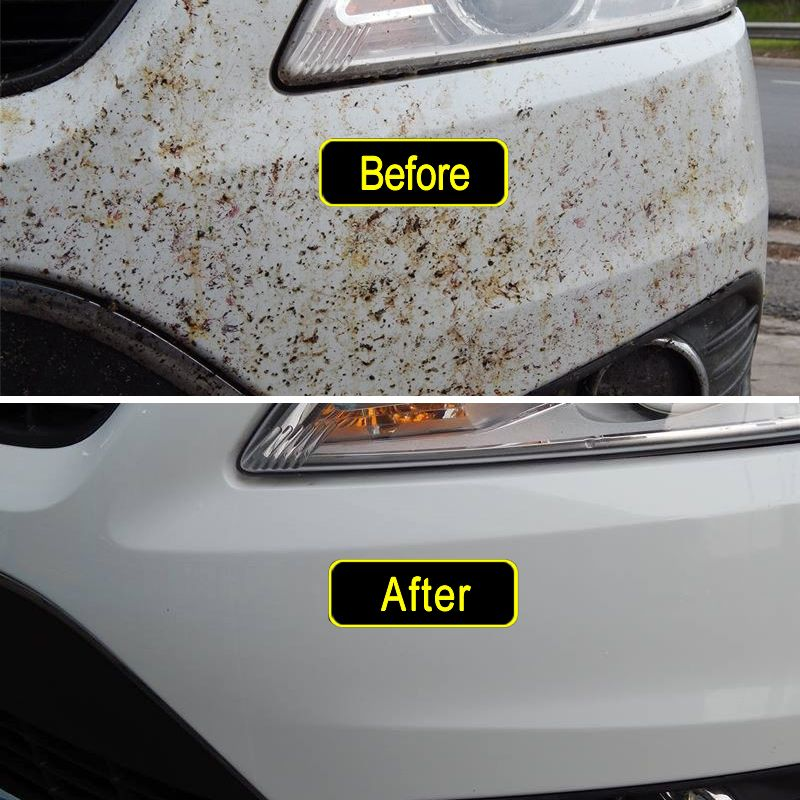 The Best Way To Get Bugs Off The Front Of A Car Removing