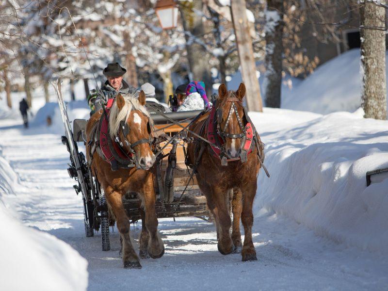 Navettes équestres pour le transfert des skieurs, what else?  Horse transfert for skiers, what else?  Réservation/Booking: http://forfaits.megeve.com