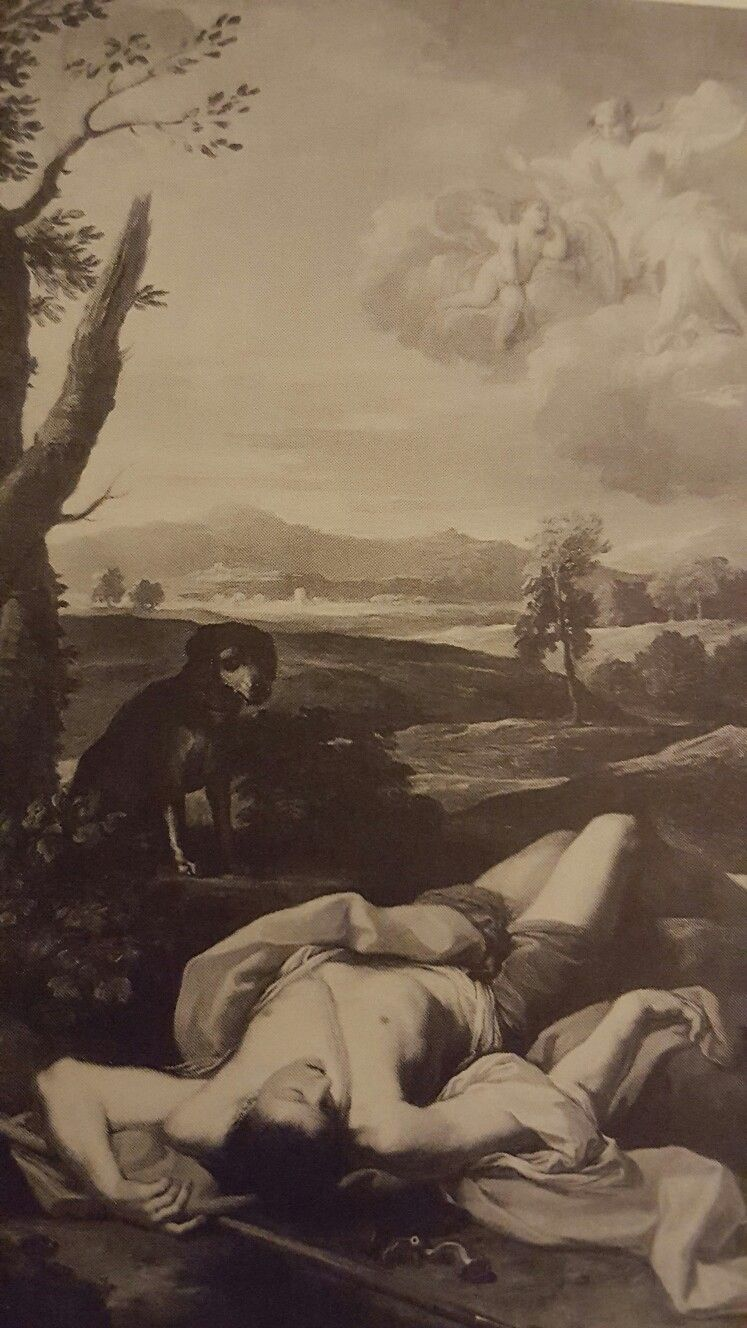 PLACIDO COSTANZI. ADONIS DYING. Florence, Private Collection.