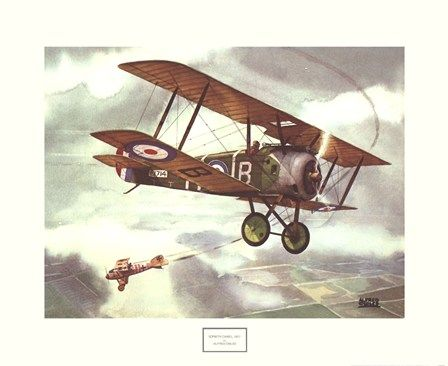 Sopwith Camel, 1917 by Alfred Owles art print