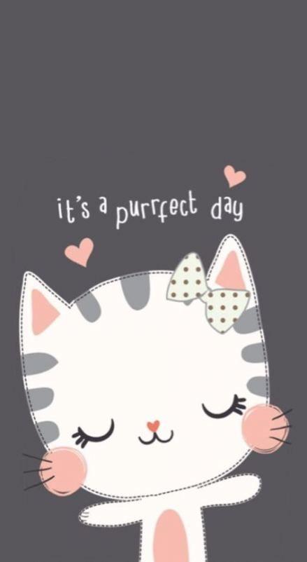 61 Ideas For Cats Wallpaper Iphone Wallpapers Backgrounds Cat Wallpaper Cartoon Wallpaper Cute Cartoon Wallpapers