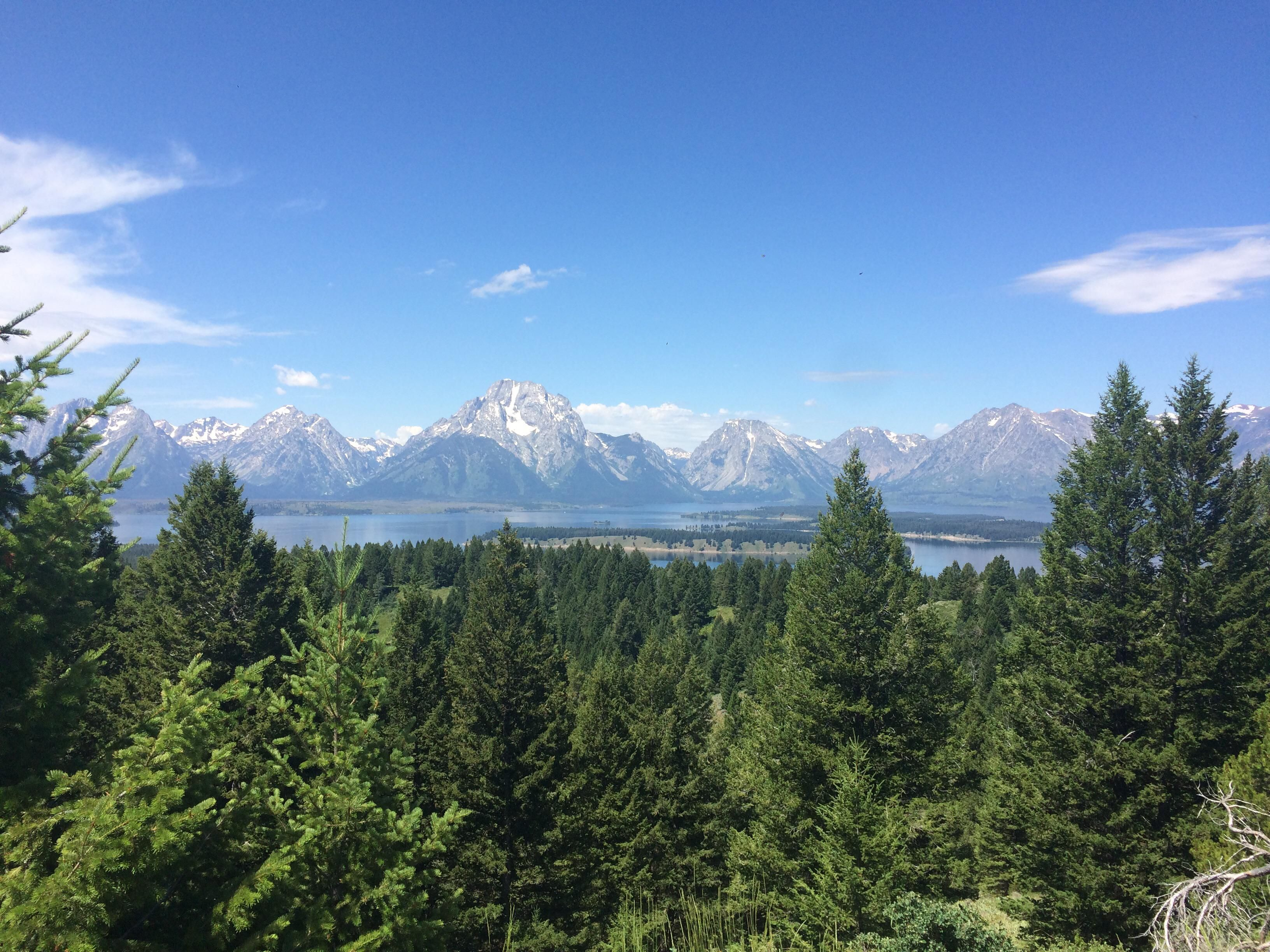 Summer in the Tetons looking out over Jenny Lake #hiking # ...