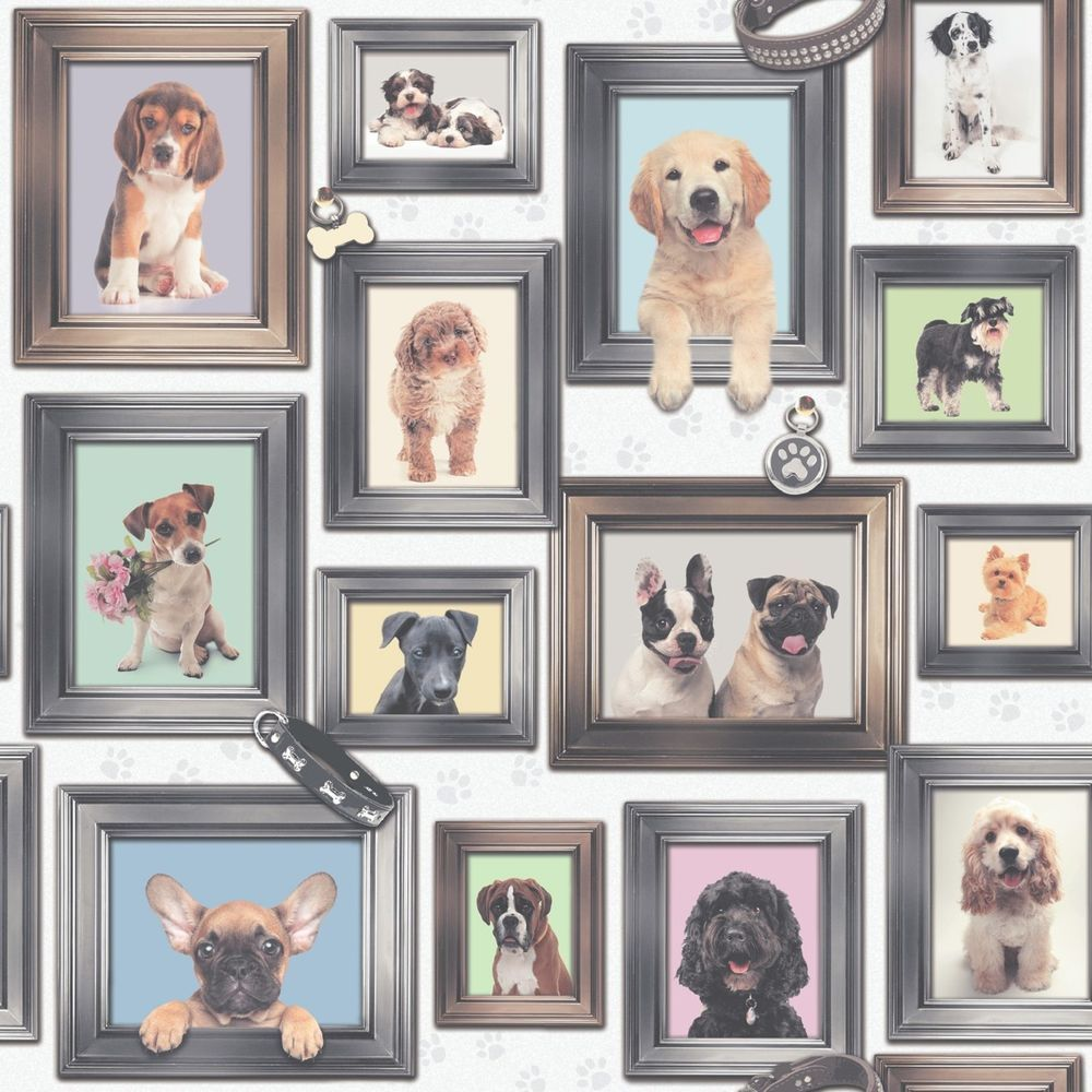 New Puppy Love Dogs In Frames By Rasch Wallpaper 272703 Free