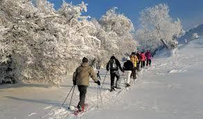 Bildergebnis für winterbilder aus dem tösstal zürich oberland