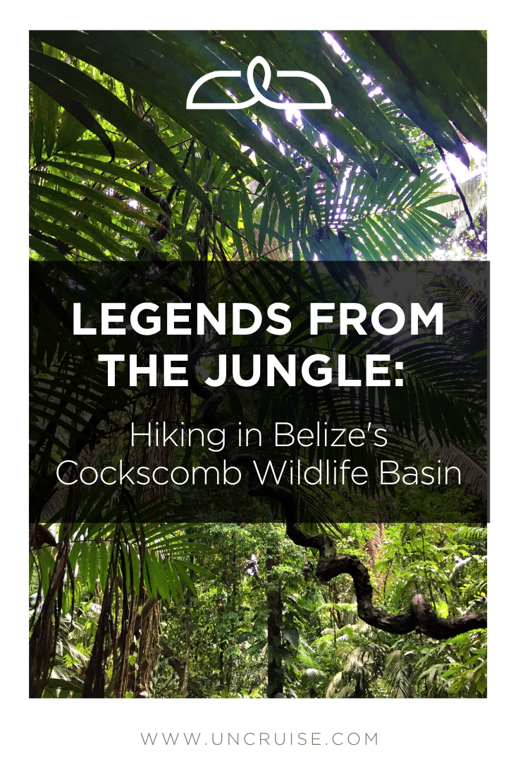 Legends Of The Jungle: Hiking In Belize's Cockscomb