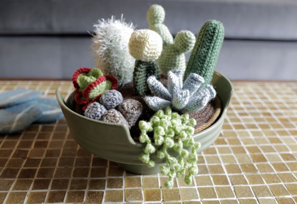 crochet cactus and succulents