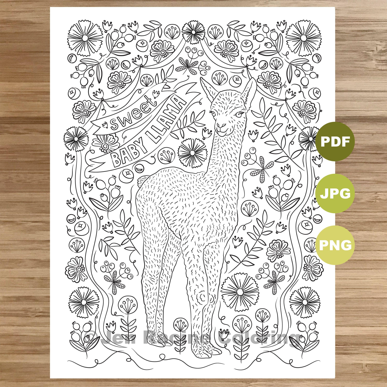 Pin On I Llove Llamas Coloring Book