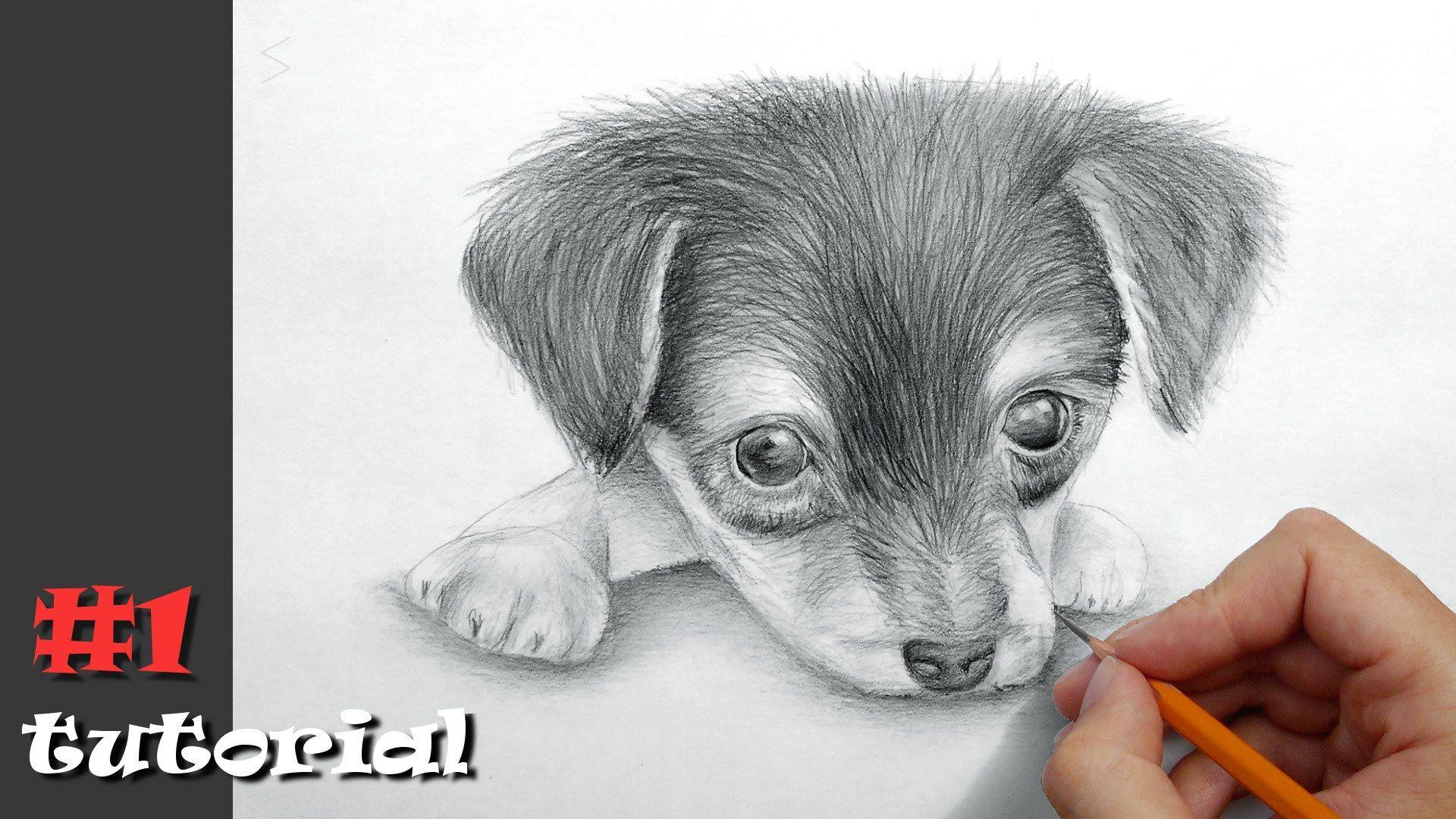 Рисуем картинки карандашом видео