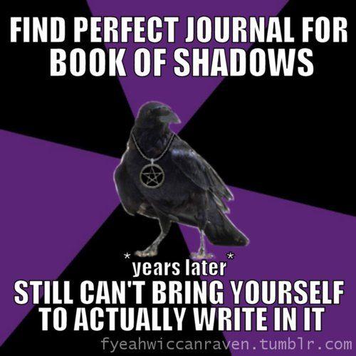 Wiccan Raven  - LOL so true.