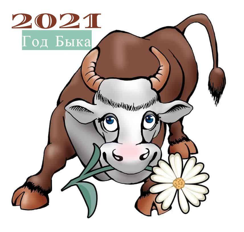 Новогодние картинки и фото с символом 2021 года - Быком | Домашняя ферма в  2020 г | Смешные коровы, Счастливые картинки, Бык