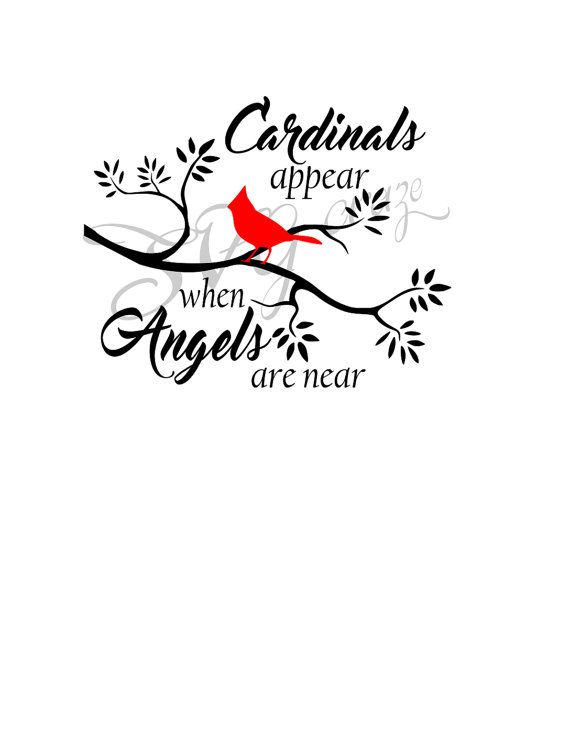 Cardinals Appear When Angels Are Near Svg Christmas