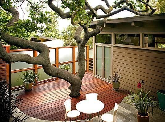 What a perfect example of the benefits of working with what you've got. This home garden provides the owners with privacy without sacrificing the beautiful sprawling oak tree in the center...