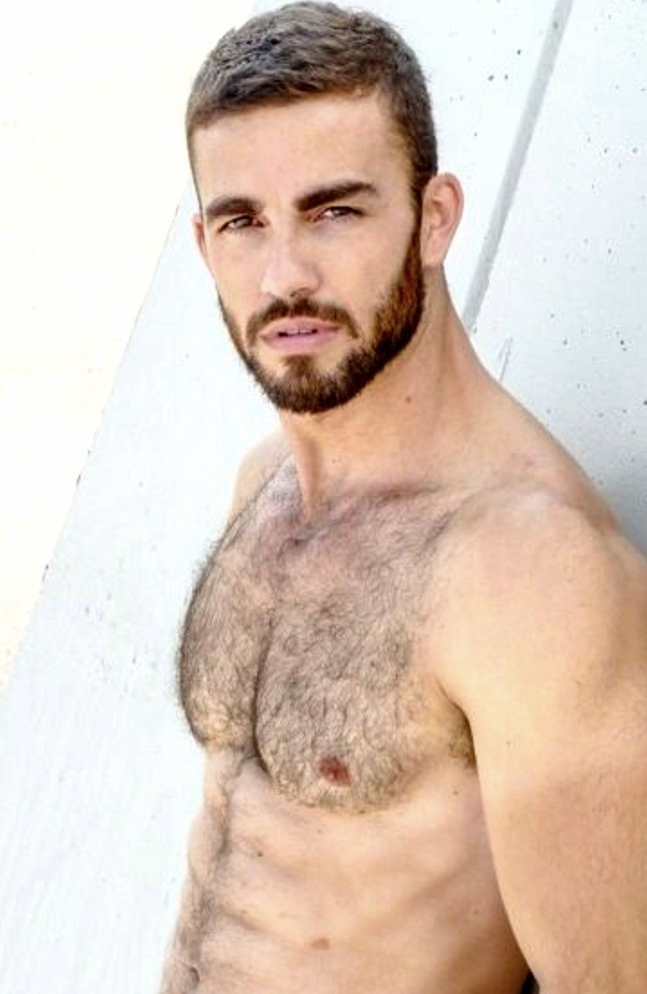 Pin by lu on handsome pinterest handsome hairy men and hot guys