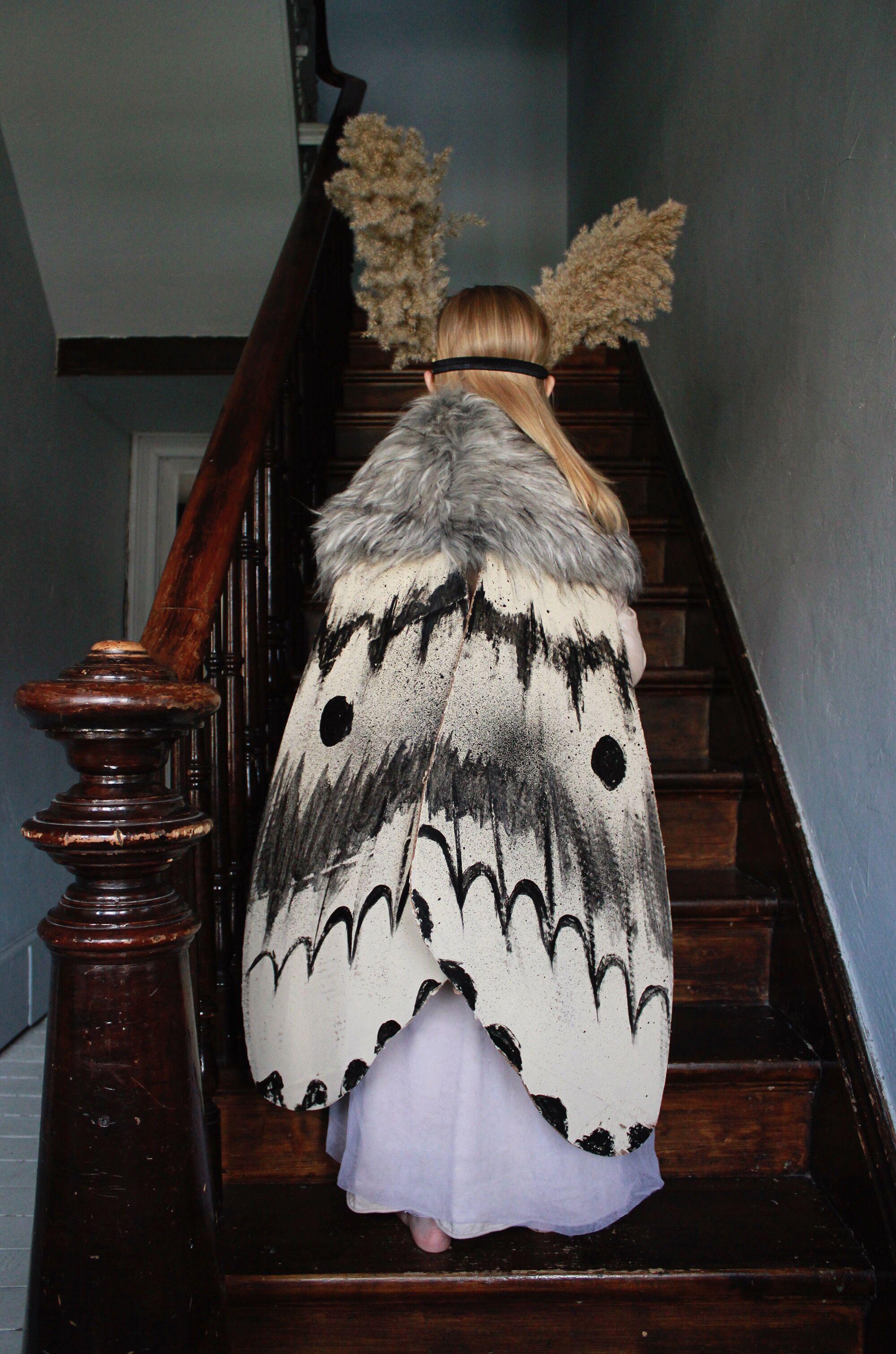 Mer Mag Moth Halloween Costume Halloween Kinder Kostume Tierkostum