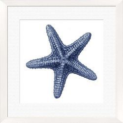 Ptm Images Starfish Framed Wall Art Sea Life Wall Art Starfish Wall Art Inspirational Wall Art