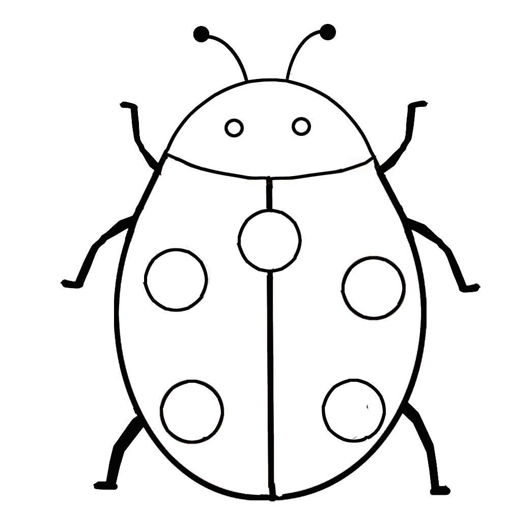 Insect Coloring Pages Insect Coloring Pages Ladybug Coloring