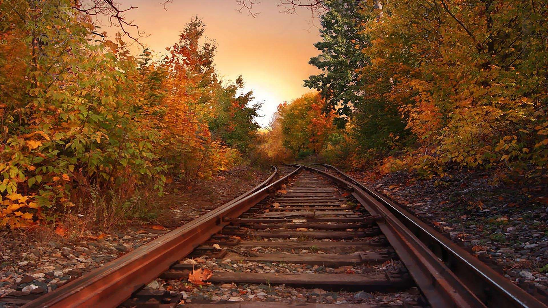 Autumn Rail Hd Wallpaper Fullhdwpp Full Hd Wallpapers 1920x1080 Autumn Scenery Scenery Photography Scenic Photos