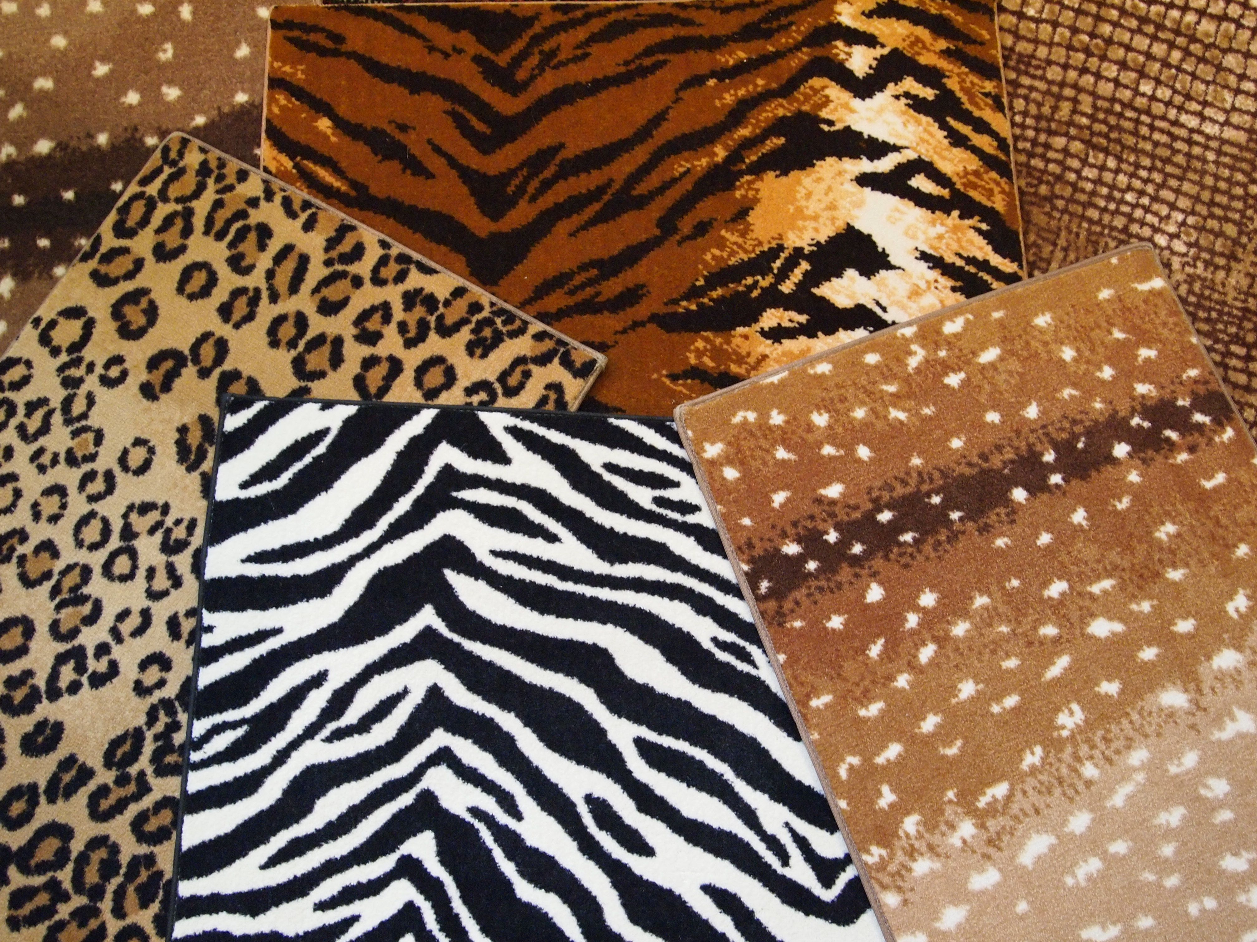 Cheetahs And Zebras And Tigers Oh My Animal Print Carpet Printed Carpet Fine Rugs