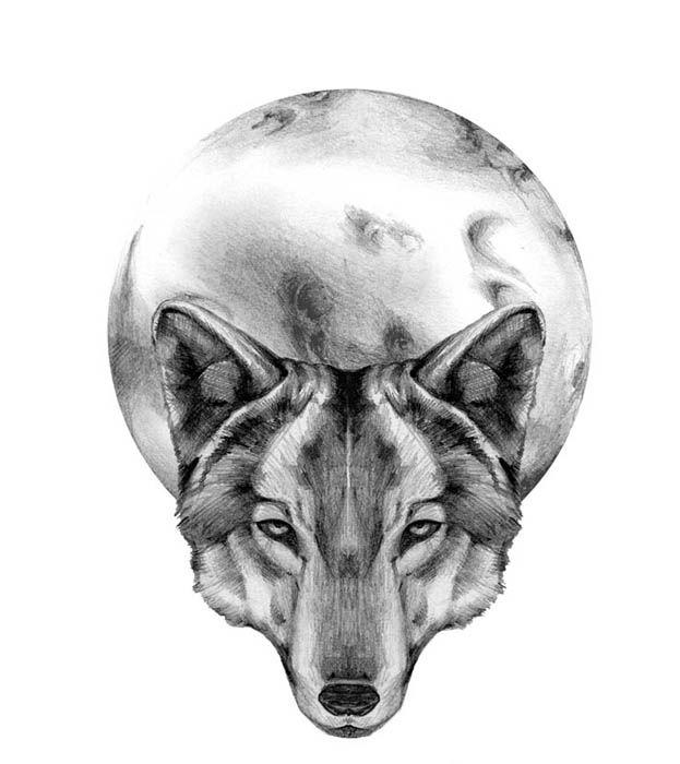 Wolf Tattoo Wolf And Moon Tattoo Wolf Tattoos Wolf Tattoo Design
