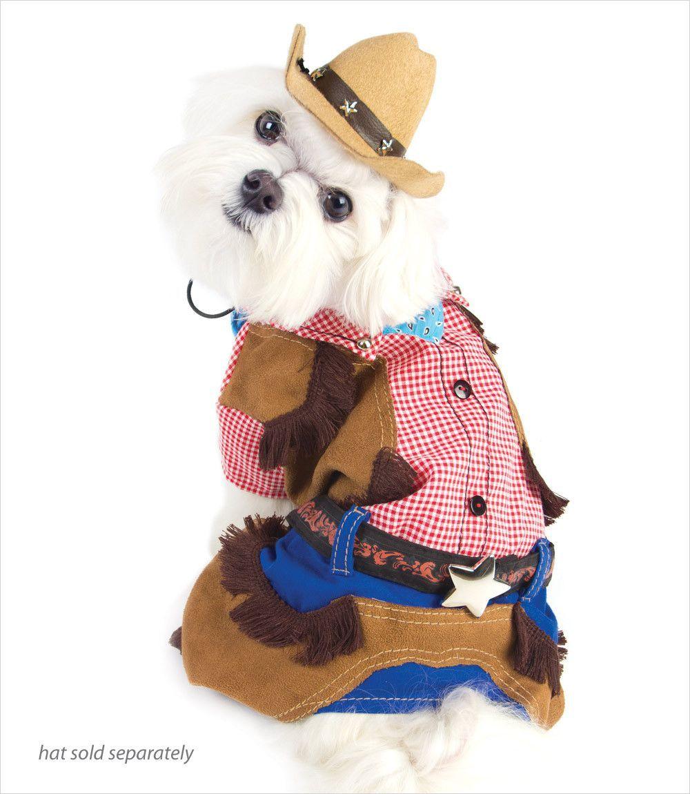 Cowboy Dog Costume  sc 1 st  Pinterest & Cowboy Dog Costume | Dog costumes Cowboys and Dogs