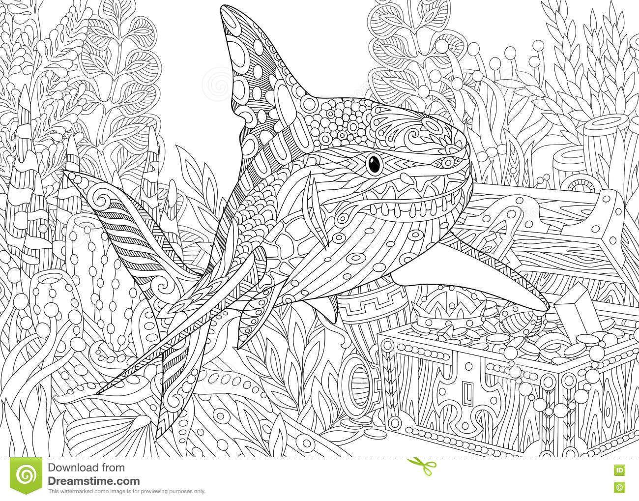 Pin von Barbara auf coloring dolphin, whale, shark | Pinterest