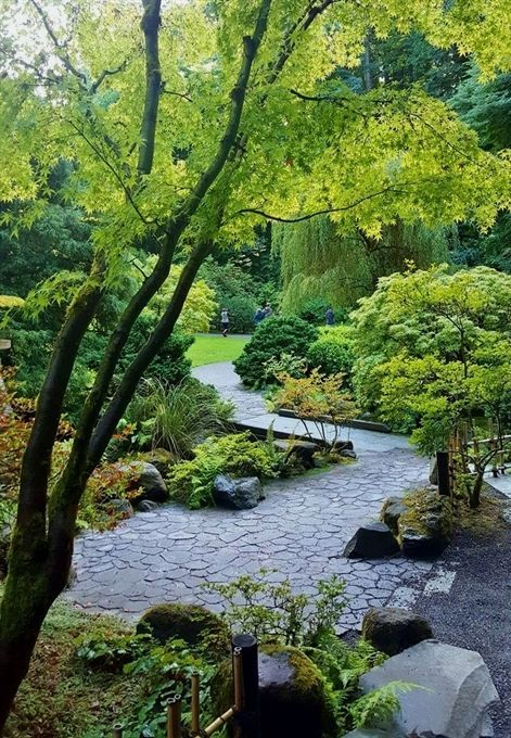 Photo of 19 Beautiful Moments I Captured in the Portland Japanese Garden