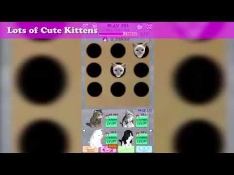https://play.google.com/store/apps/details?id=klearwing.play.kitten