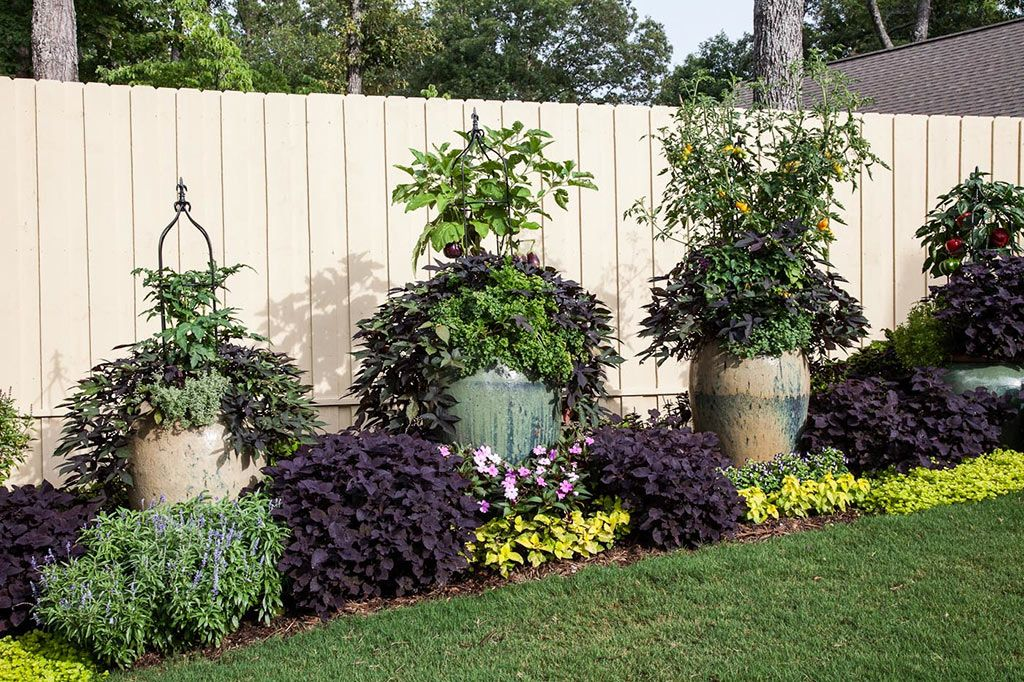 Try These Simple Edible Container Designs To Add Flair As Well As Flavor Get Tips On How To Combine Plants And Use Planters To Create Edible Garden Ideas Along A Fence
