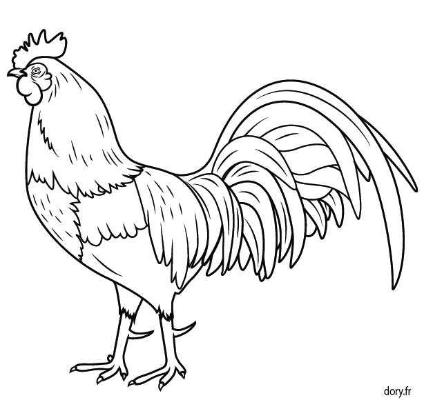 Dessin colorier un coq coq blankok coq dessin dessin et dessin a imprimer - Coq a dessiner ...