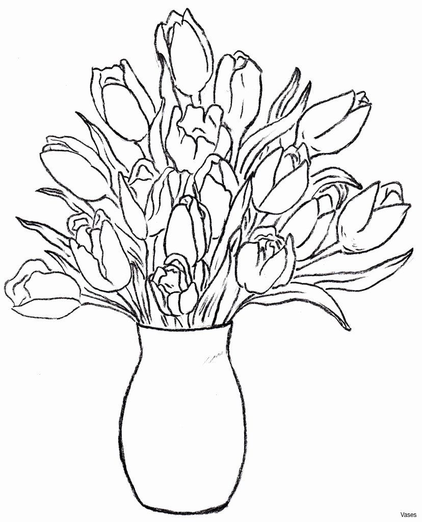 Colouring Flowers Template Luxury Luxury Flower Stem Coloring Pages Fansites In 2020 Flower Coloring Pages Flower Sketch Images Coloring Pages