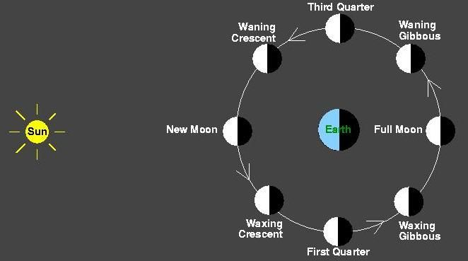 This diagram shows the moon orbiting Earth as seen from far above ...