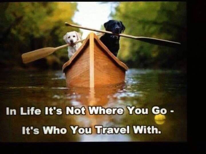 In life it's not where you go it's who you travel with.