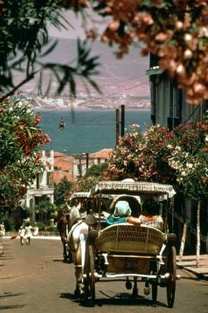 Kizil Adalar, Istanbul, Turkey This was also called Princes Island...  pretty cool place... no cars, just travel by horses !!!!