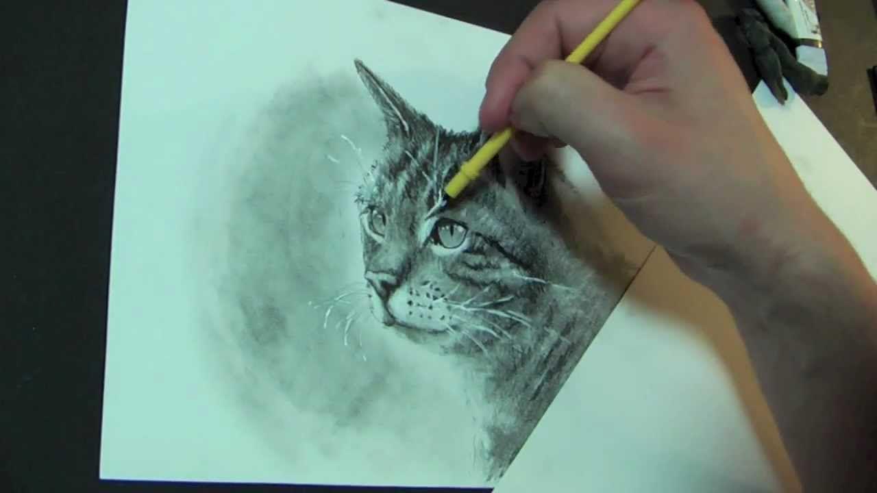 Lerne Eine Katze Zu Zeichnen Ja 1 Freitagstunde In 2020 Katze
