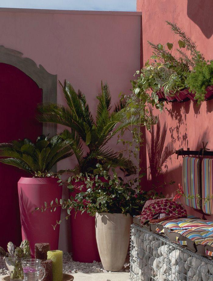 Blog sobre plantas jardines y paisajismo material for Plantas paisajismo