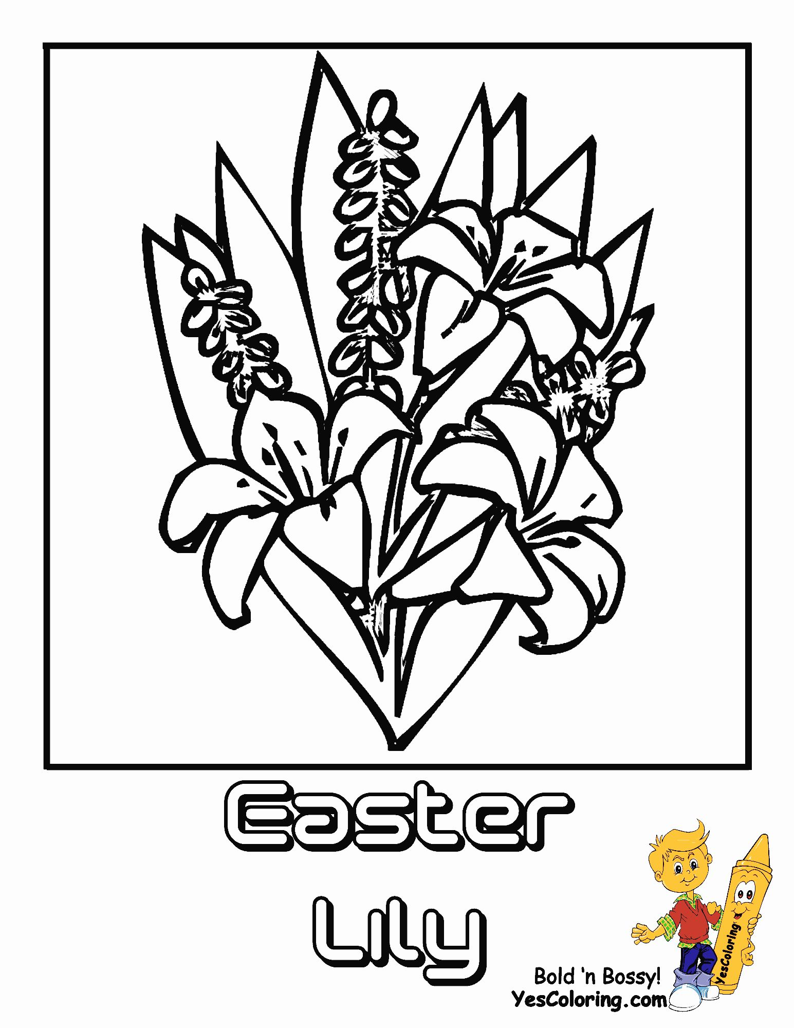 Pin On Best Flower Coloring Pages