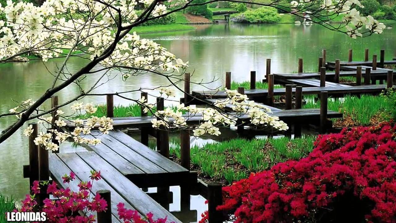 Pin by Mary E. BerensOney on Musik ♥ Japanese garden