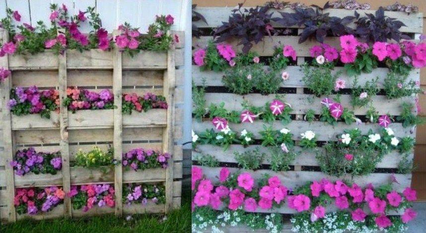 Avec une palette enti re agr ment e de fleurs vous pouvez for Cacher mur jardin
