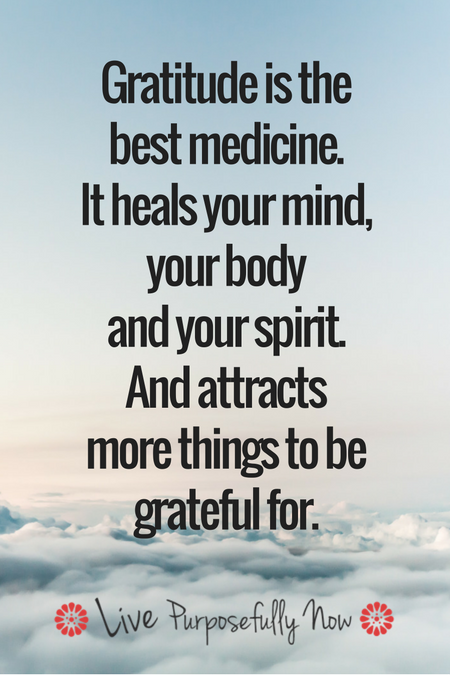 Gratitude: The Mega Strategy for Happiness and Wellbeing | Gratitude quotes,  Grateful quotes, Inspirational quotes