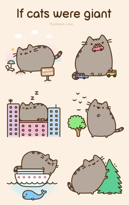 bb409945ba8be055a802d7cadf03894f pusheen if cats were giant pusheen, the adorable bouncy cat