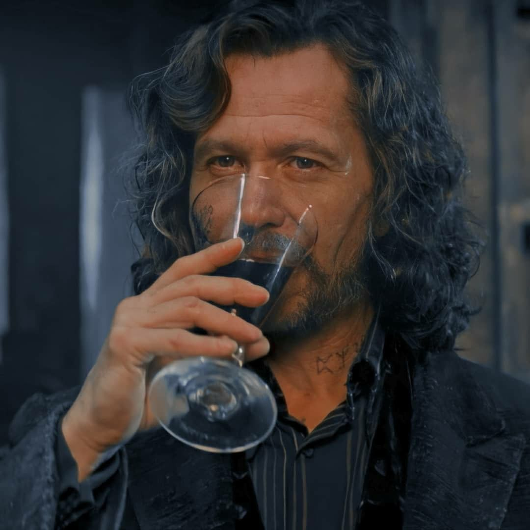 Sirius Black Harry Potter Icons Harry Potter Pictures Sirius Black
