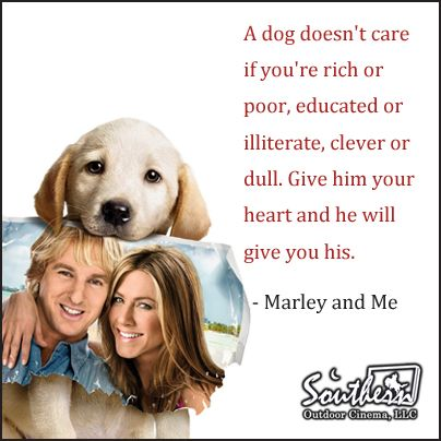 movie quote marley and me movie quotes pinterest movie tvs and movie tv. Black Bedroom Furniture Sets. Home Design Ideas