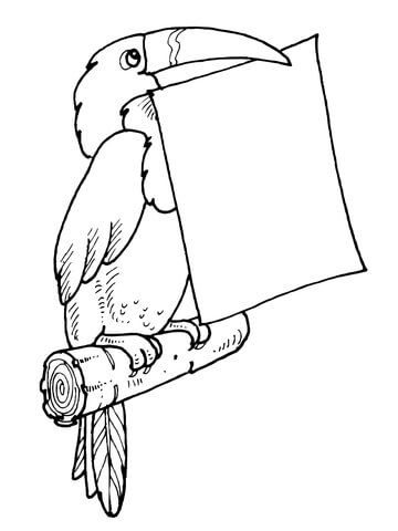 Toucan Holds A Letter In Its Bill Coloring Page From Toucan