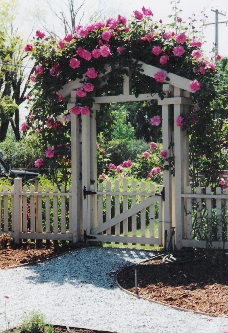 Pictures of fences and gates fence and gate exterior for Garden gate arbors designs