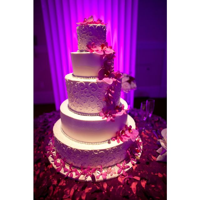 Fabulous wedding cake utilizing accent lighting for a much more dramatic presentation.  Rent this equipment and much more at RentMyWedding.com  #rentmywedding